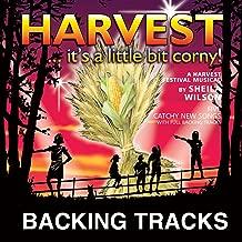 Harvest time again!