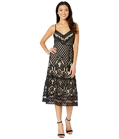 American Rose Paloma Lace Midi Dress (Black/Nude) Women
