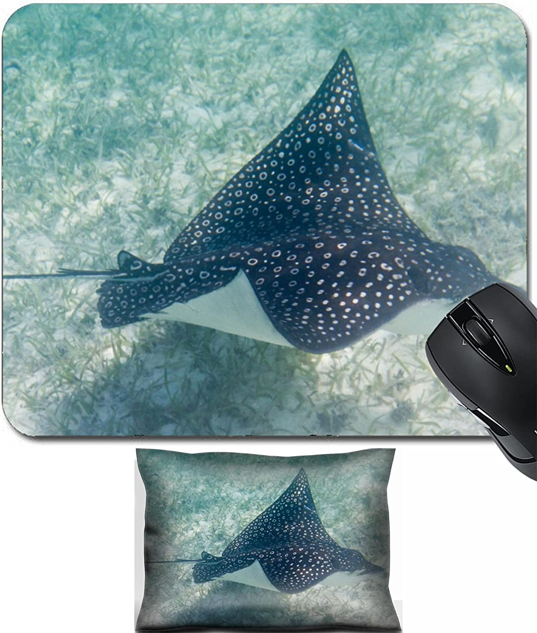 MSD Mouse Wrist Rest and Small Mousepad Set, 2pc Wrist Support design 24593130 underwater close up of a sting ray the coast Belize