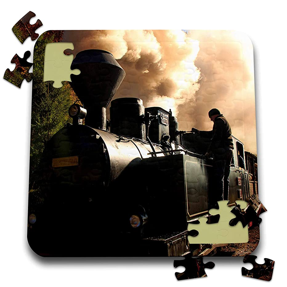 3dRose Danita Delimont - Trains - Romania. Vaser Valley. Wood-Burning, steam Locomotive Being serviced. - 10x10 Inch Puzzle (pzl_313849_2)