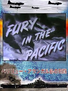 ペリリュー・アウンガル島の死闘 Fury in The Pacific