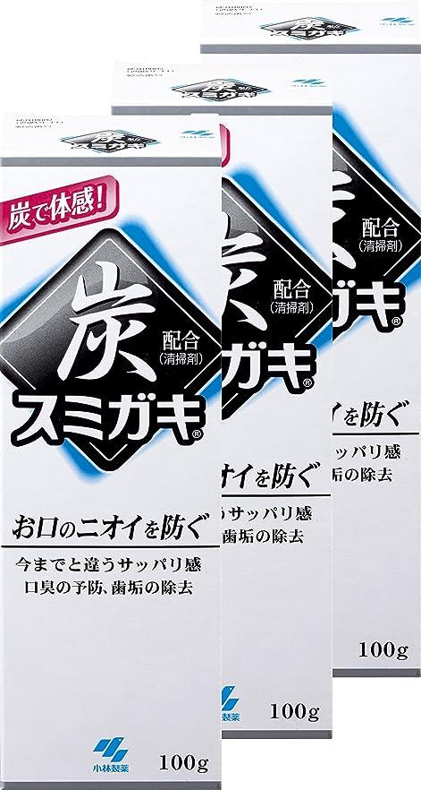 写真撮影密輸削減【まとめ買い】スミガキ 炭配合(清掃剤) 口臭予防 歯みがき ハーブミントの香り 100g×3個