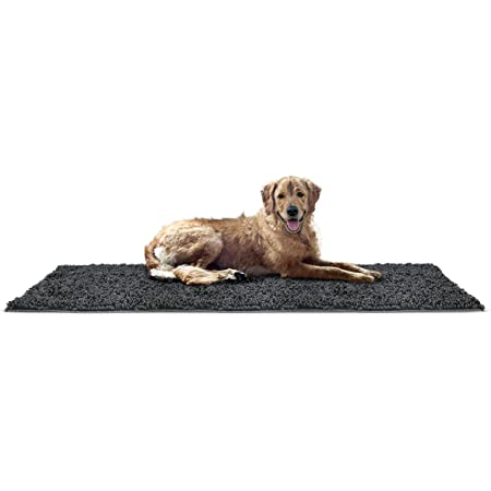 Two Dogs Under Moon Chenille Area Rug