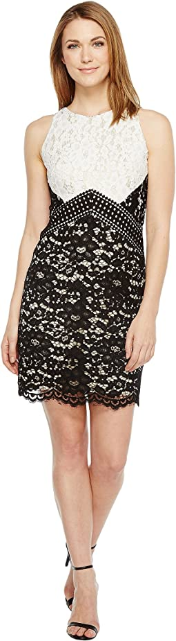 Vince Camuto Lace Color Block Shift Dress
