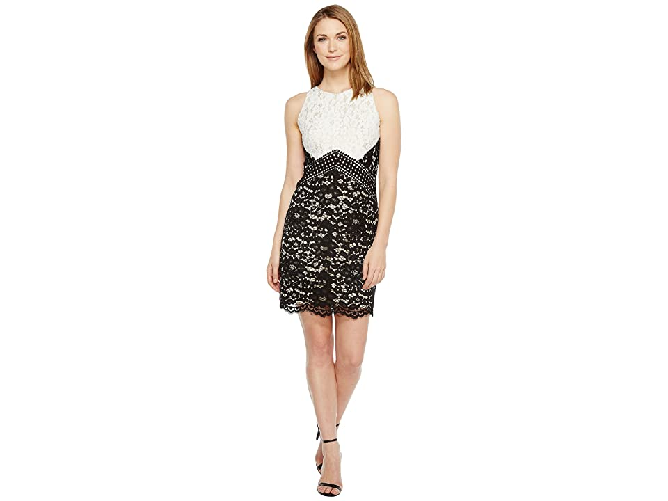 Vince Camuto Lace Color Block Shift Dress (Black/Ivory) Women