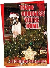 NobleWorks, Tree Fainted Dog - 36 Bulk Boxed Christmas Cards with Envelopes - Funny Christmas Tree and Pet Dog Greeting Card Set C1144XSG-B36