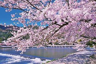 やのまん ジグソーパズル 嵐山染める満開桜(京都) 1000ピース (50x75cm) 10-1388