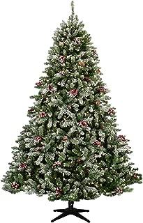 green twist white pine tree