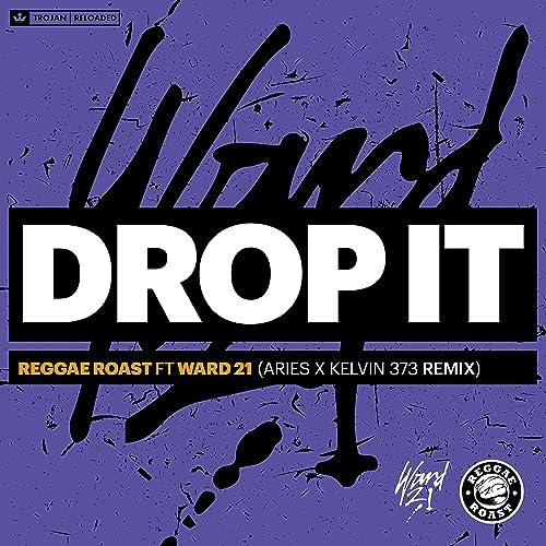 Drop It (feat  Ward 21) [Aries & Kelvin 373 Remix] by Reggae