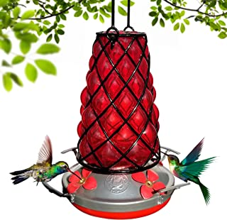 Grateful Gnome - Hummingbird Feeder - Hand Blown Glass - Red SpiderBird Lantern