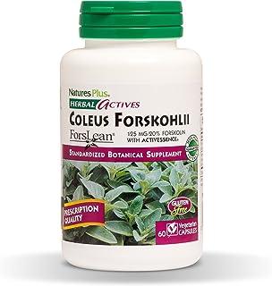NaturesPlus Herbal Actives Coleus Forskohlii - 125 mg, 60 Vegan Capsules - Heart Support Supplement, Supports Healthy Meta...