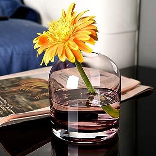 S1EGAN Glass Vase, Hand Blown Colored Small Unique Glass Bud Vase, Glass Diffuser for Home Decor (Cerise)