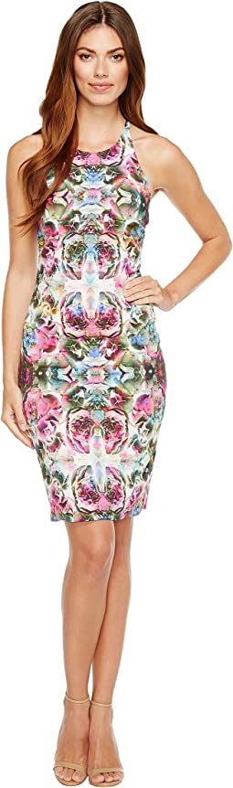 Nicole Miller - Adaline Halter Dress