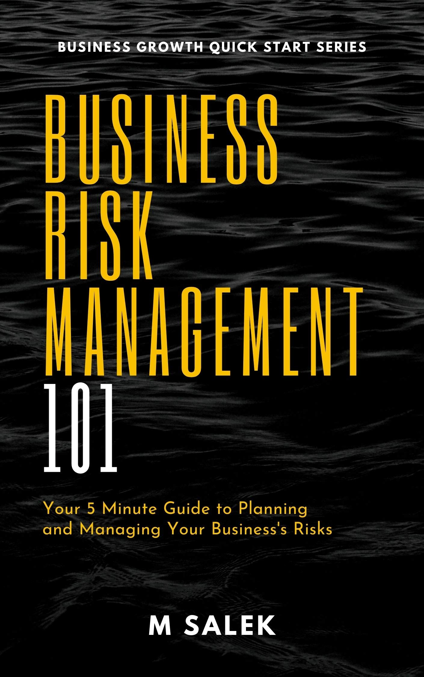 Business Risk Management 101 : Your 5 Minute Guide to Planning and Managing Your Business's Risks (Business Growth Quick Start Series Book 3)