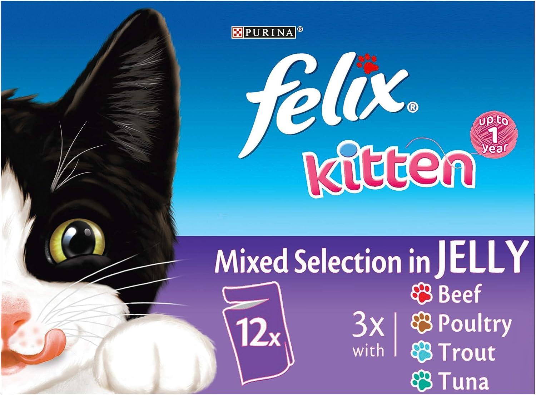 Felix Kitten Mixed Selection Pouch 12 x 100 g (Pack of 4)