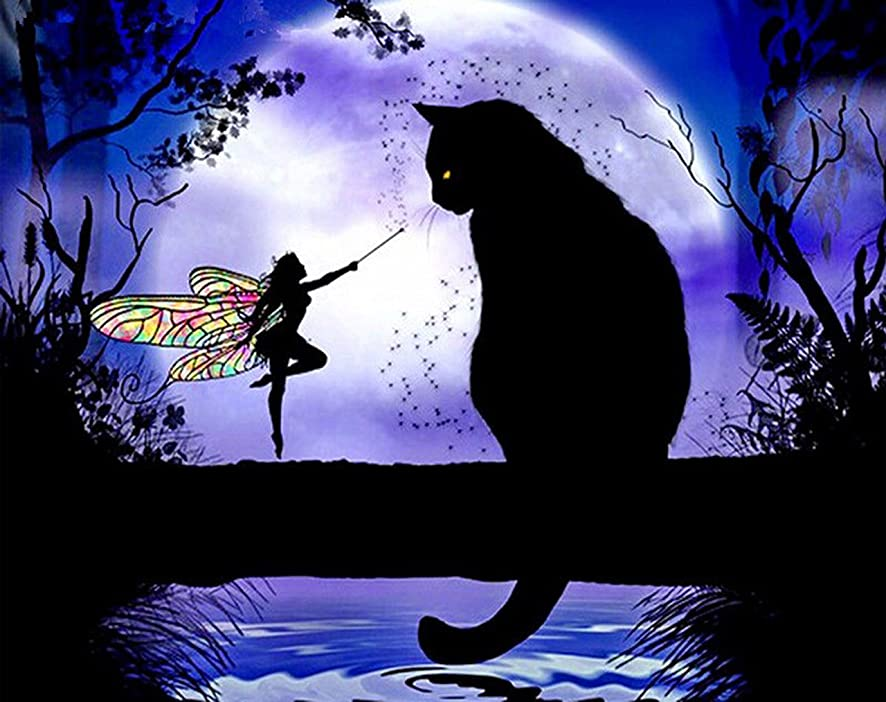 Hot New DIY 5D Diamond Painting Kit Diamond Embroidery Art Painting Pasted Paint By Number Kits Stitch Craft Kit Home Decor Wall Sticker - Black Cat Butterfly Girl, 30x25cm