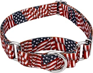 Country Brook Petz Martingale Dog Collar - American Pride Collection