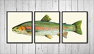 Rainbow Trout Fish Wall Art Prints set of 3 Prints 8x10 - Unframed - Beautiful River lake Nature Home Room Decor Decoration to Frame