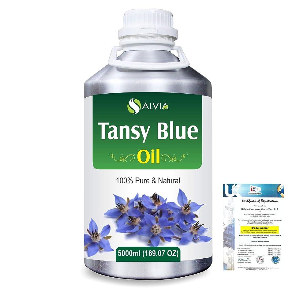 和解するギャング奪うTansy Blue (Tanacetum annuum) 100% Natural Pure Essential Oil 5000ml/169fl.oz.