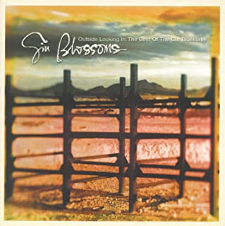 gin blossoms as long as it matters