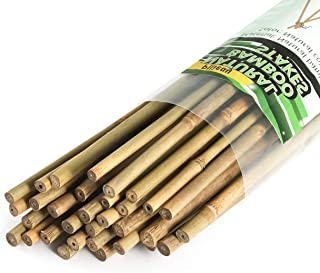 Pllieay 50 Pieces Natural Bamboo Stakes, 2 Feet