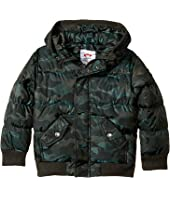 Appaman Kids - Down Filled Knit Detail Puffy Coat (Toddler/Little Kids/Big Kids)