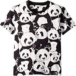 D&G Panda T-Shirt (Little Kids)