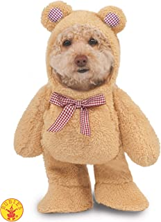 Walking Teddy Bear Pet Suit