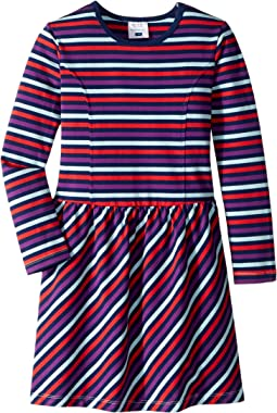 Long Sleeve Skater Dress (Toddler/Little Kids/Big Kids)