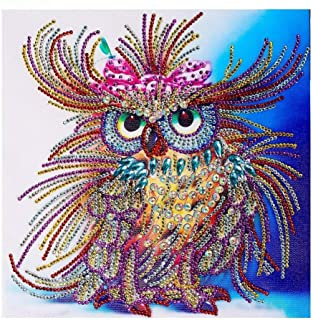 Owl Diamond Painting Handmade DIY Special Shaped Diamond Drawing Amazing DIY Diamond Painting Art Kits for Adults -11.8 X11.8in (owl)