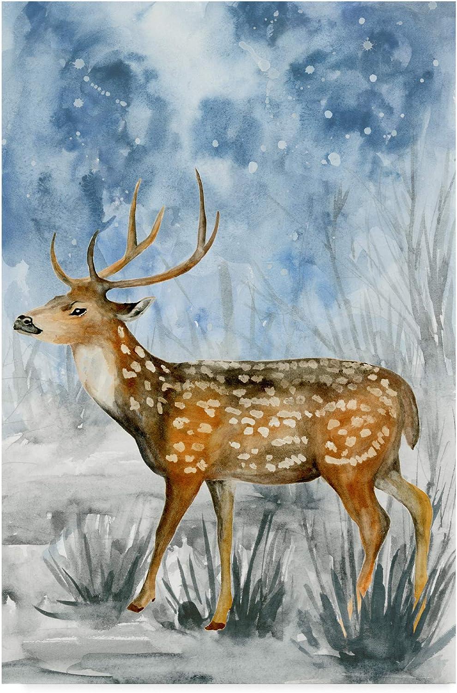 Trademark Fine Art Snowy Night II by Melissa Wang, 12x19