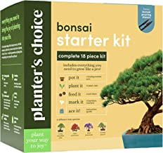 Bonsai Starter Kit - The Complete Growing Kit to Easily Grow 4 Bonsai Trees from Seed + Comprehensive Guide & Bamboo Plant...