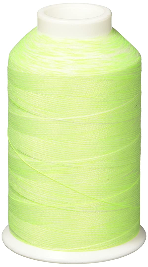 YLI 24230-2WG Linda Taylor Variegated Thread, Spearmint
