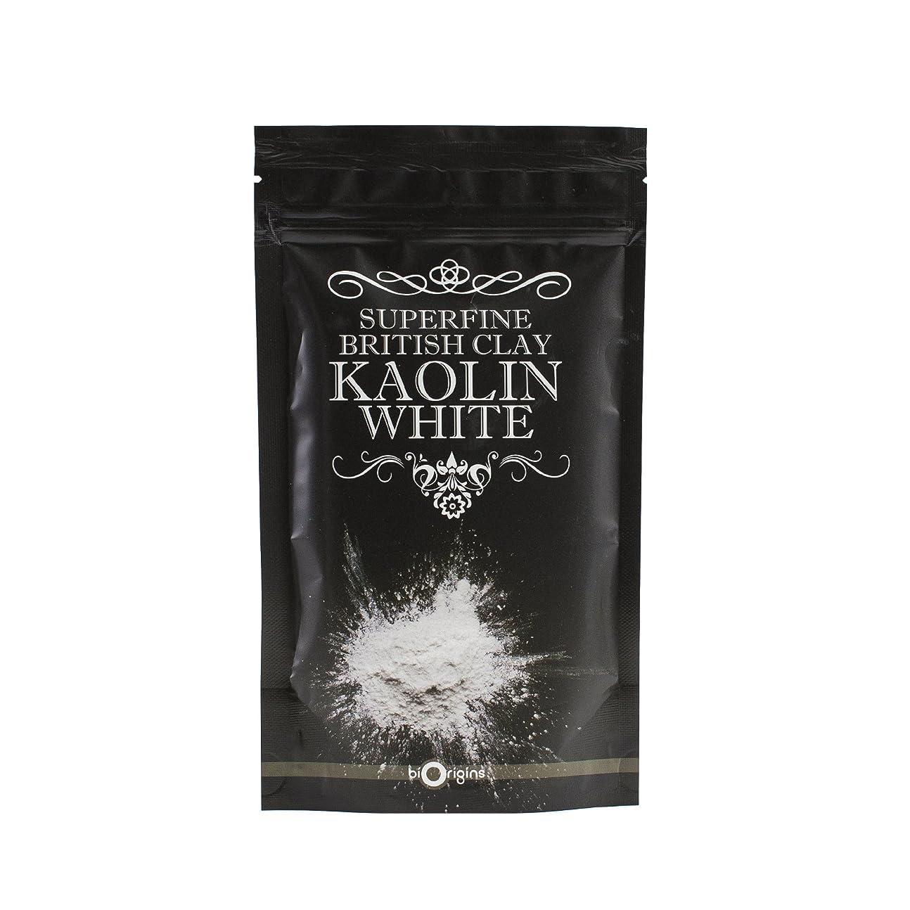 ノベルティマルクス主義者実現可能性Kaolin White Superfine British Clay - 100g