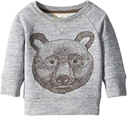 PEEK - Bear Sweatshirt (Infant)