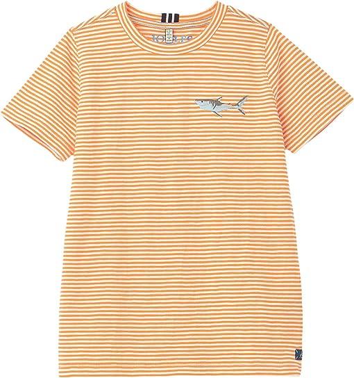 Orange Stripe Shark