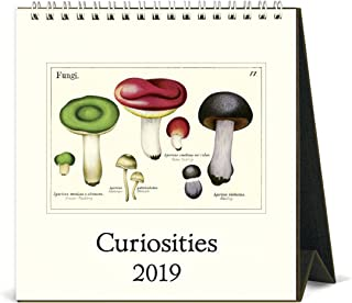 Cavallini Papers & Co. 2019 Desk Curiosities Calendar, Multi