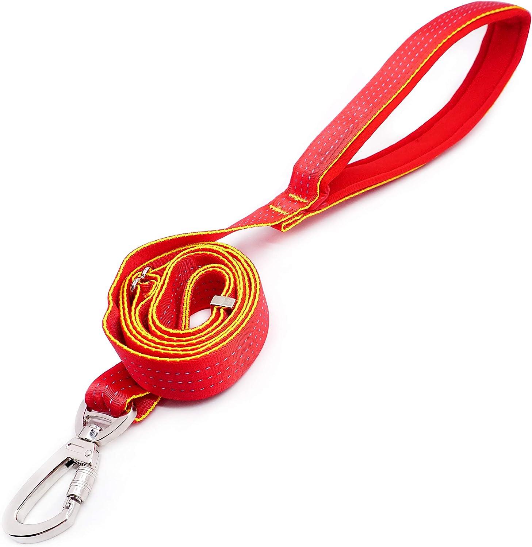 6FT, Arancione ArtPeach Collare e 180cm Guinzaglio per Cani Collare Guinzaglio Cane Cinturino Riflettente in Nylon con Manico Imbottito per Allenamento a Piedi