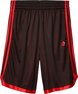 Seasonal Iconic Mesh Shorts (Big Kids)
