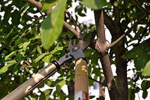 Made in Japan 3.9 Inch Pruning Blade KaKUrI Japanese Bypass Loppers Heavy Duty Large Limb and Branch Cutting Shears Long Handle