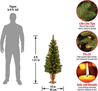 National Tree Company Pre-lit Artificial Tree For Entrances and Christmas  Includes Pre-strung White Lights   Montclair Spruc
