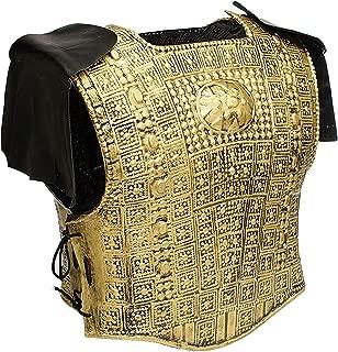 2 Piece Gold Armor Set W 2 Shoulder Fringes Roman Soldier Costume Armor 21998