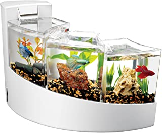 cool house fish tanks