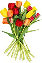 Benchmark Bouquets Multi-Colored Tulips (Vase not Included) – Fresh Flowers – Overnight Shipping and Delivery – Farm Fresh Tulips, Flower Bouquet, Flower Arrangements, Home Décor