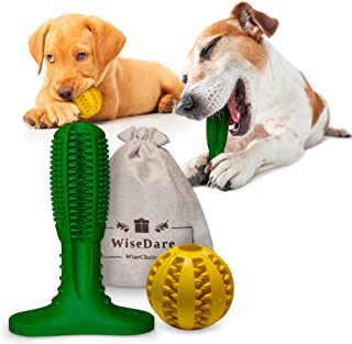Best dog toys for teeth cleaning Reviews