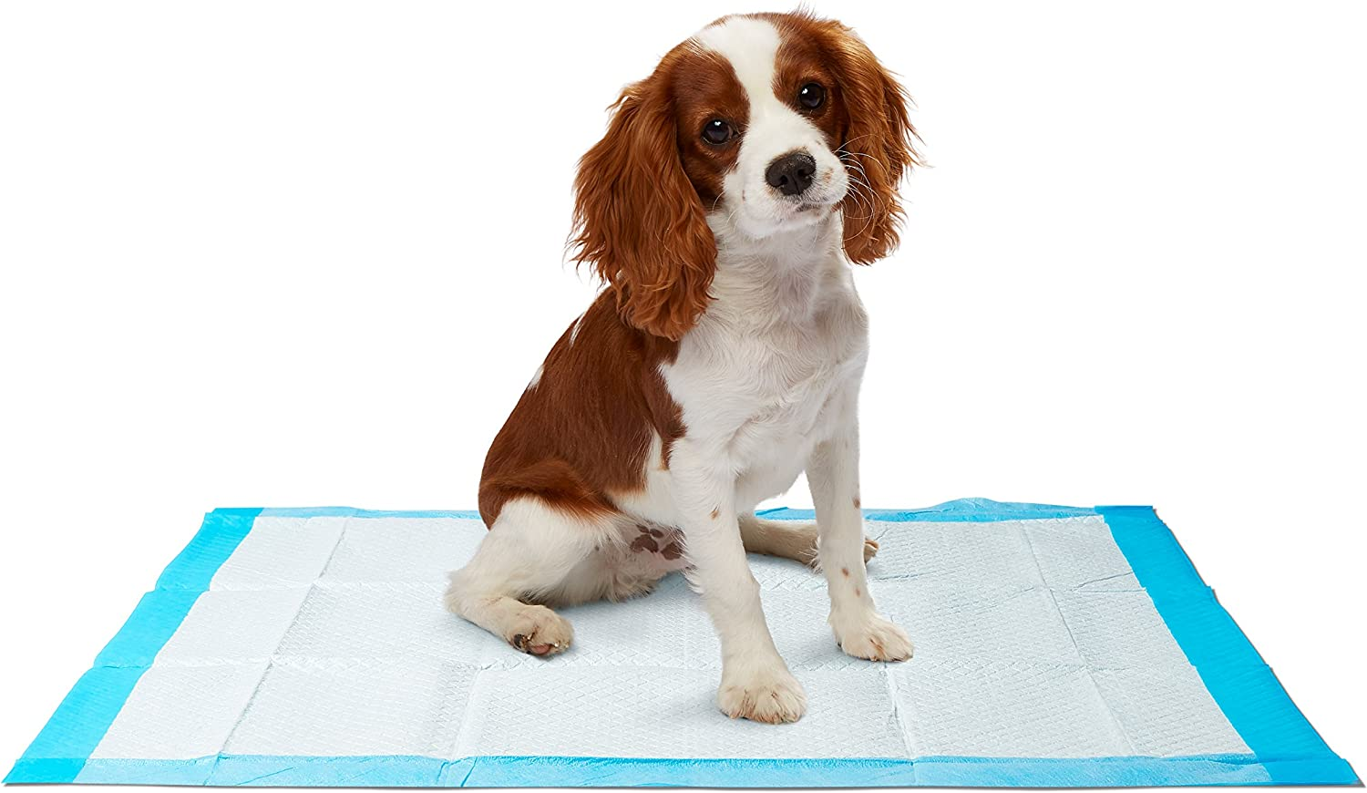 Dr. Dunley Dog & Puppy Pads, Super Absorbent, Easy Clean Up, 23 X 24  (200 Count)