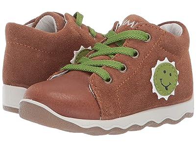 Primigi Kids PTN 33709 (Infant/Toddler) (Brown) Boy