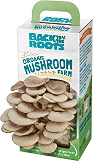 Back To The Roots Organic Mushroom Growing Kit, Harvest Gourmet Oyster Mushrooms In 10..