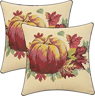 Simhomsen Thanksgiving Holidays Decorative Throw Pillow Covers, Embroidered Pumpkins and Maple Leaves Fall Cushion Cover, Sofa Couch Pillow Cases, 17x17 (Pack 2)
