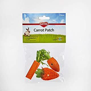 Best Kaytee 3 Count Chew Toy, Carrot Patch Variety Review